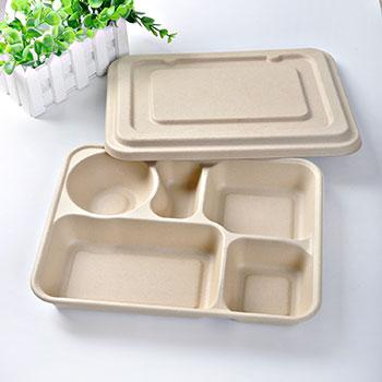 Eco biodegradable disposable food tray » 15981